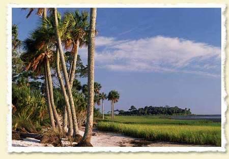 Florida_forever